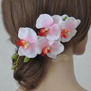 orchidee, sposa